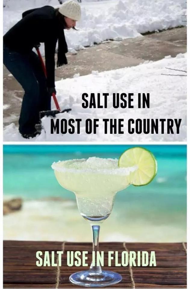 salt-use.jpg