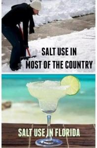 salt use